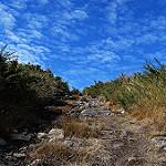 Fotos de Ferrol