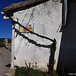 Fotos de Cogolludo