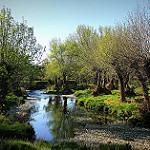 Fotos de Villanueva de las Peras
