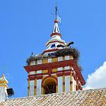 Fotos de Castilblanco de los Arroyos