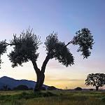 Fotos de Aldeanueva de la Sierra