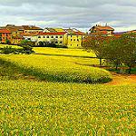 Fotos de Abarzuza