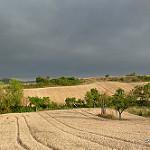 Fotos de Cardeñajimeno