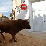 Fotos de La Vall d'Uixó