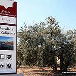 Fotos de Moraleda de Zafayona