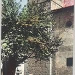 Fotos de Motilla del Palancar