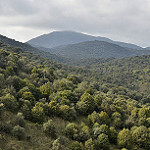 Fotos de Paredes de Escalona