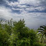 Fotos de El Sauzal
