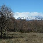 Fotos de Palacios de Sanabria