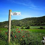 Fotos de Sant Pere Sallavinera