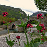 Fotos de Burgui