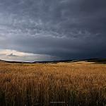 Fotos de Castrillo-Tejeriego