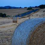 Fotos de Vilafranca de Bonany