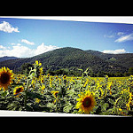 Fotos de La Vall de Bianya