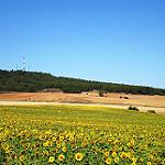 Fotos de San Cristobal de Boedo