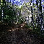 Fotos de Navarredonda de la Rinconada