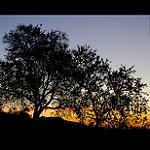 Fotos de Castellar