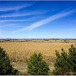 Fotos de Villanueva de las Manzanas