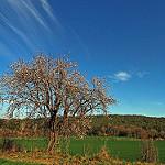 Fotos de Sant Marti Vell