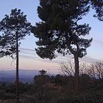 Fotos de Navahondilla