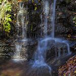 Fotos de Montseny