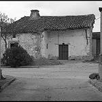 Fotos de Negrilla de Palencia
