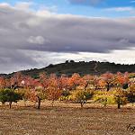 Fotos de Santa María de Valverde