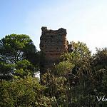 Fotos de Villaviciosa de Córdoba