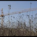 Fotos de Aranguren