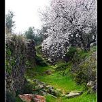 Fotos de Aldeanueva de Barbarroya