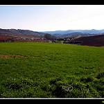 Fotos de Alarba