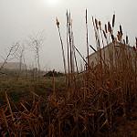 Fotos de Viana de Duero