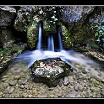 Fotos de Cañizares