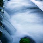Fotos de Palma de Gandía