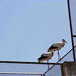 Fotos de Ituero de Azaba