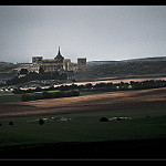 Fotos de Almendros