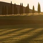 Fotos de Ballesteros De Calatrava