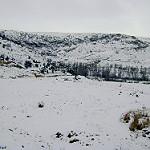 Fotos de Palomar De Arroyos