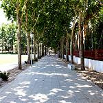 Fotos de San Fernando de Henares