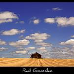 Fotos de Roales de Campos