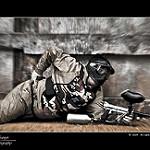 Fotos de Torres Torres