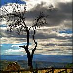 Fotos de Morella