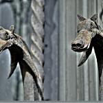 Fotos de Cassà de la Selva