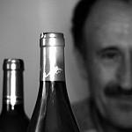 Fotos de Coca de Alba