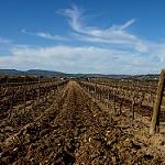 Fotos de La Granada