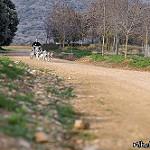 Fotos de Uterga