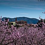 Fotos de Alcalalí