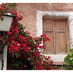 Fotos de Tivissa