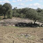 Fotos de Santa Olalla del Cala