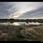 Fotos de Torrico